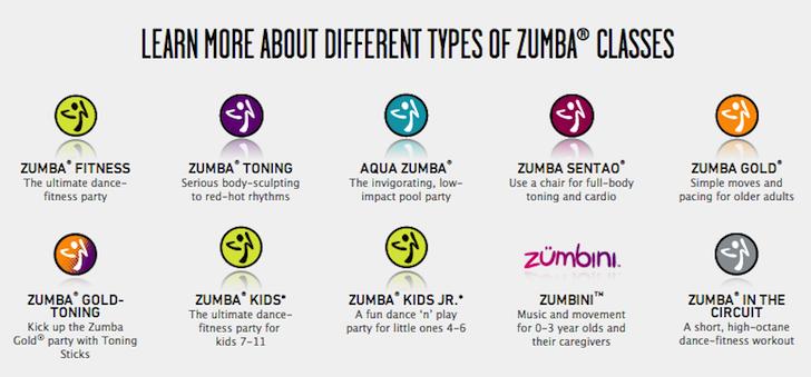 Zumba Fitness Company Snapshot